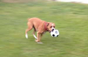 running soccer ball